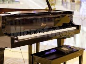 如何选购钢琴