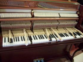 选购钢琴小知识