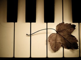 选购二手钢琴时常见的误区|上海伯雅钢琴有限公司