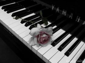 想买二手钢琴,选购钢琴的步骤及具体方法分析