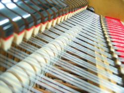 练习钢琴的过程中别忽视了对钢琴的保养!